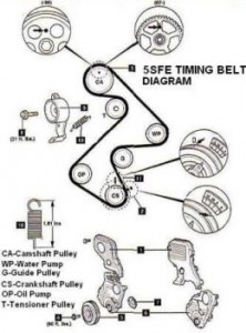 timing belt diagram